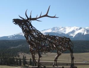 Elk 7 2