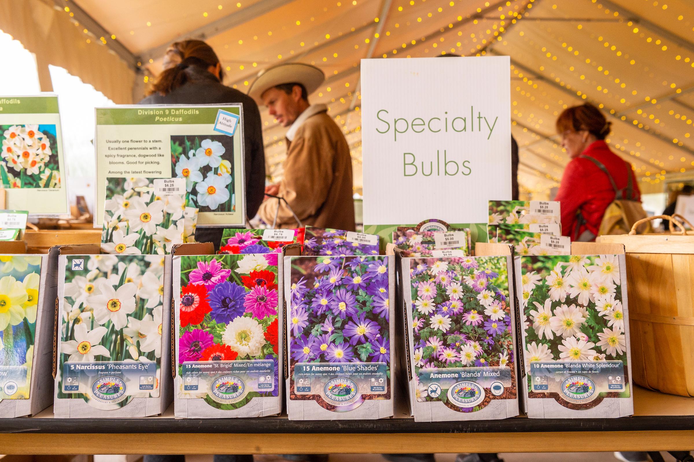 20180928 Plant Bulb Sale 044